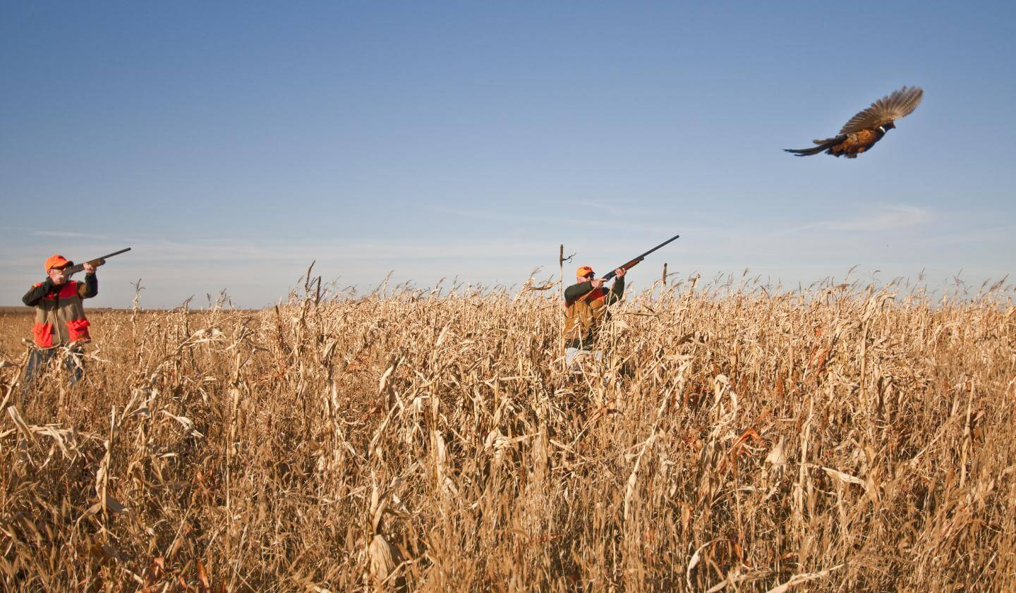 Pheasant hunting permit issue not dead yet for Pa lifetime fishing license