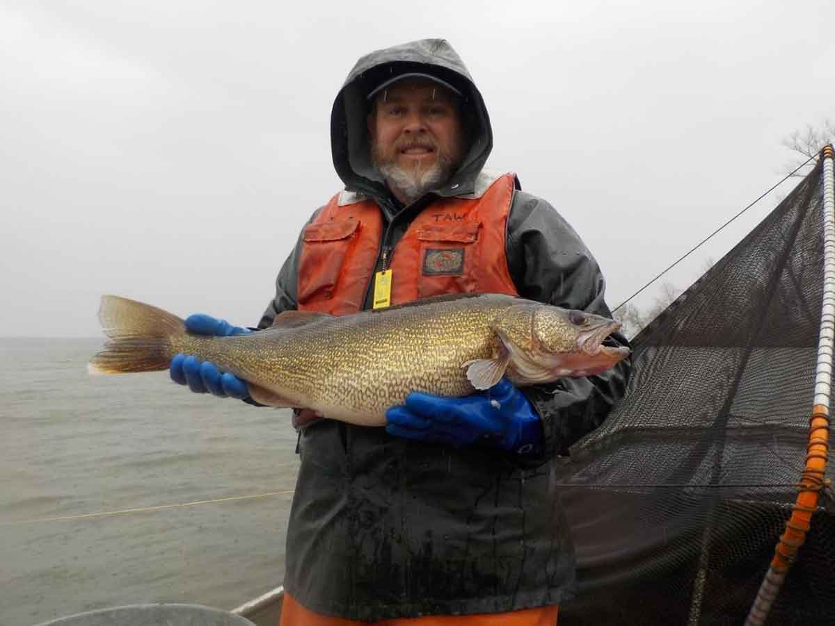 Walleye fishing is fun.