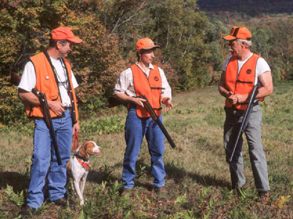 Sunday hunting isn't legal in 2018-19 seasons.