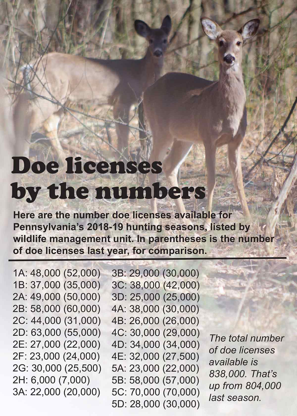 Pennsylvania Game Commissioners set doe licenses for 2018-19