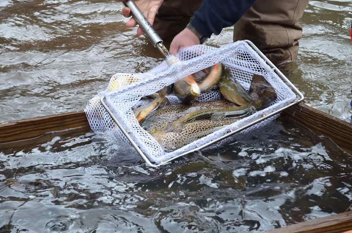 Anglers and boaters may be looking at hard times across PA.