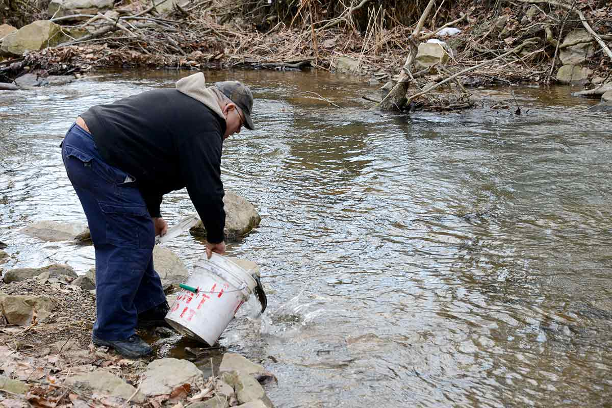Turtle creek isn 39 t getting any stocked trout this spring for Pa fish stocking
