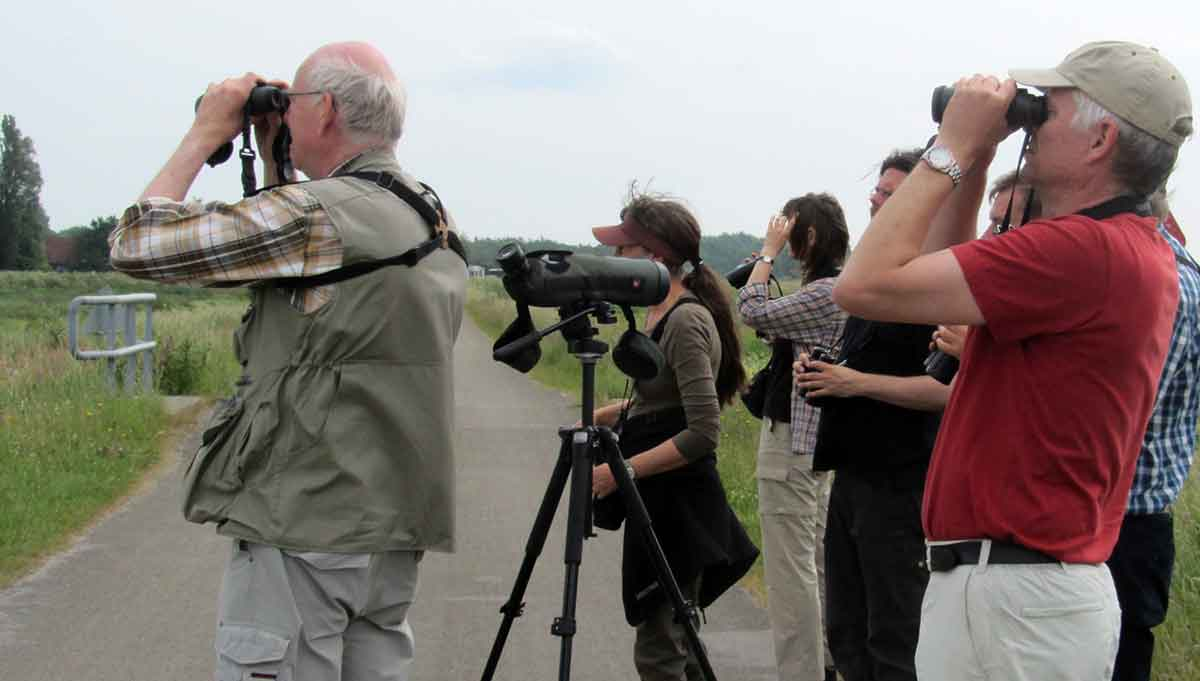 Wildlife watching, or birds and mammals, is very popular.